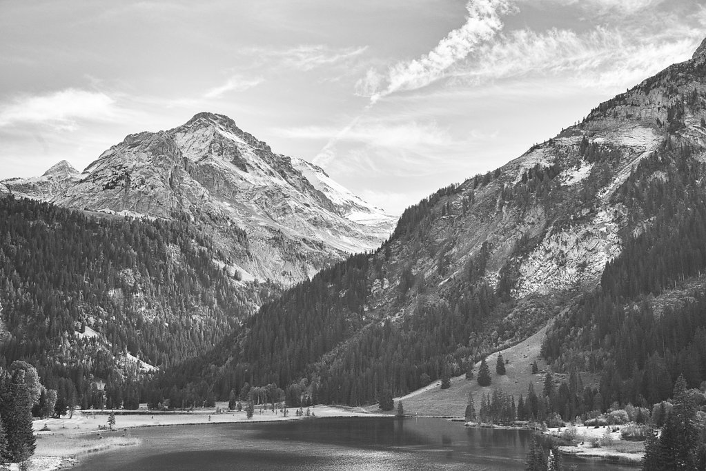 Alpine autumn in black and white